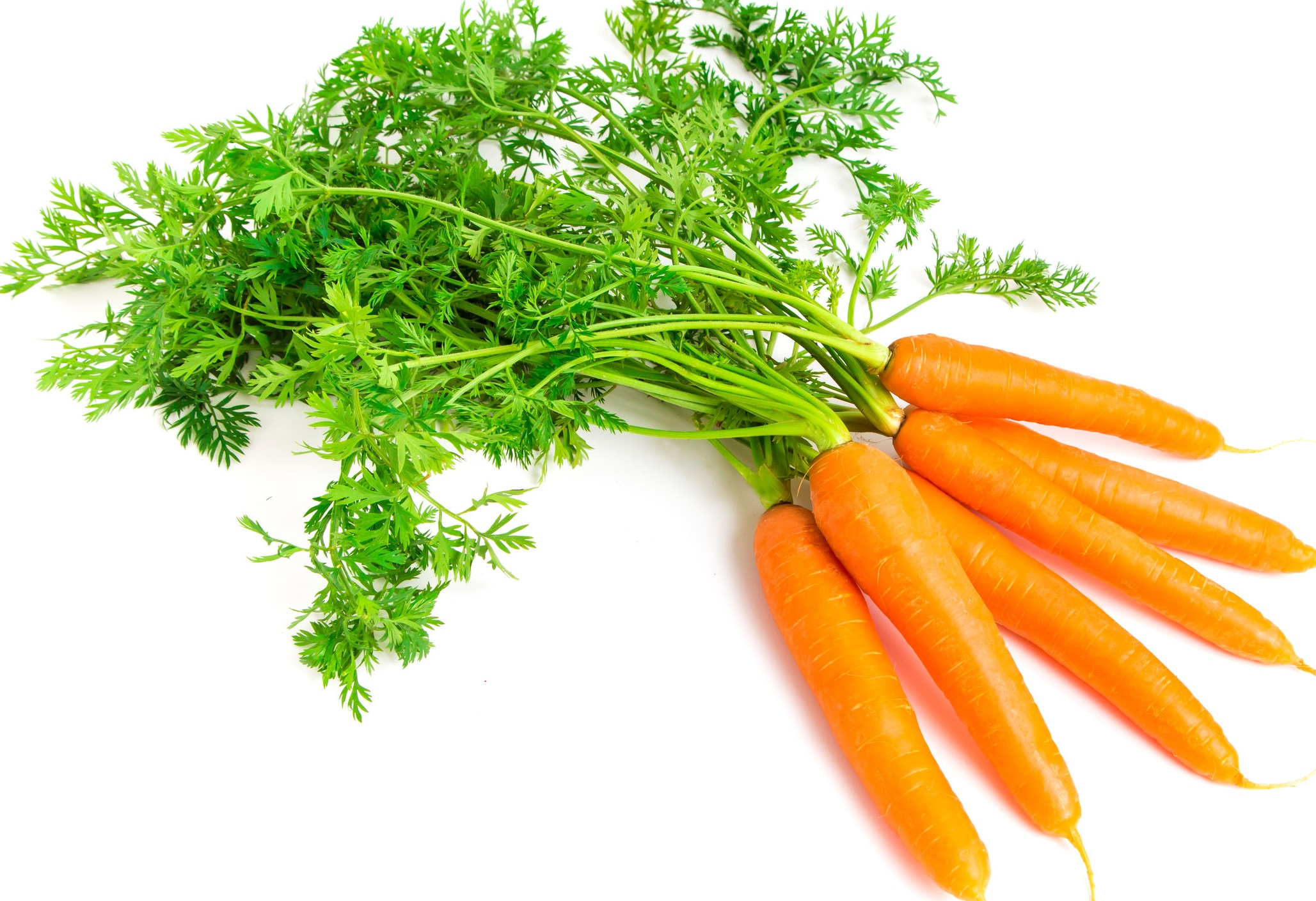 vizelethajtó ételek magas vérnyomás ellen